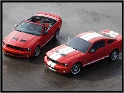 Cabrio, Mustang Shelby, Ford Mustang
